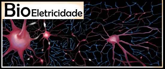 Bioeletricidade